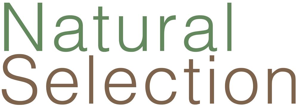 Natural Selection logo.png