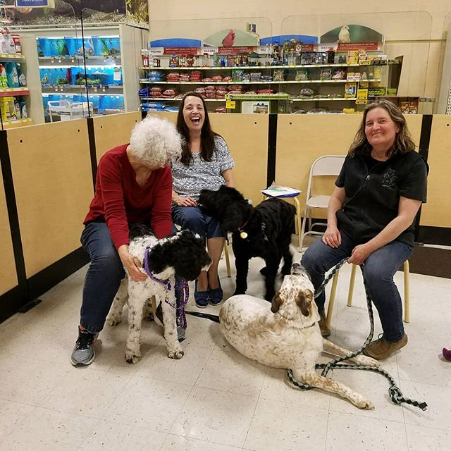 Happy Mother's Day to all the dog mums out there! Had a great day celebrating with CGC certifications (and red velvet cake). . . . . . . #petsmarttraining #mothersday #dogmom #dogtraining #dogsarekidstoo #crybabies #furbaby #giantschnauzer #labradoodle #boxer #rescuepup #adopted #petsmartalicia #longmontcolorado #longmontdogs #redvelvetcake #momsday