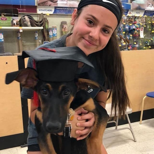Happy Graduation Ruger and @lau.ren25 and the rest of puppy class see you Saturday for intermediate! #youregorgeous . . . . . #petsmarttraining #dobermanpuppy  #dobermanpinscher #puppytraining #longmontdogs #dobiesofinstagram #swiftiesforever #dobermansofinstagram #positivereinforcement #positiveresults