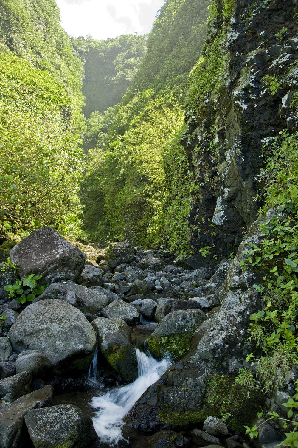 Laufuti Streanm Ta'u Island - National Park Service of American Samoa.jpg