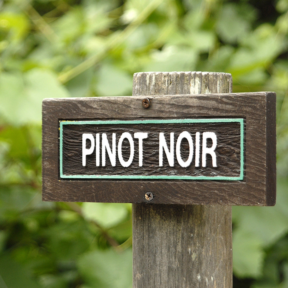Vancouver Island Pinot Noir Festival