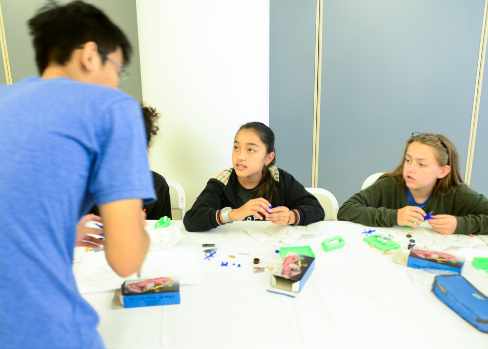 Mentor teaching students during program