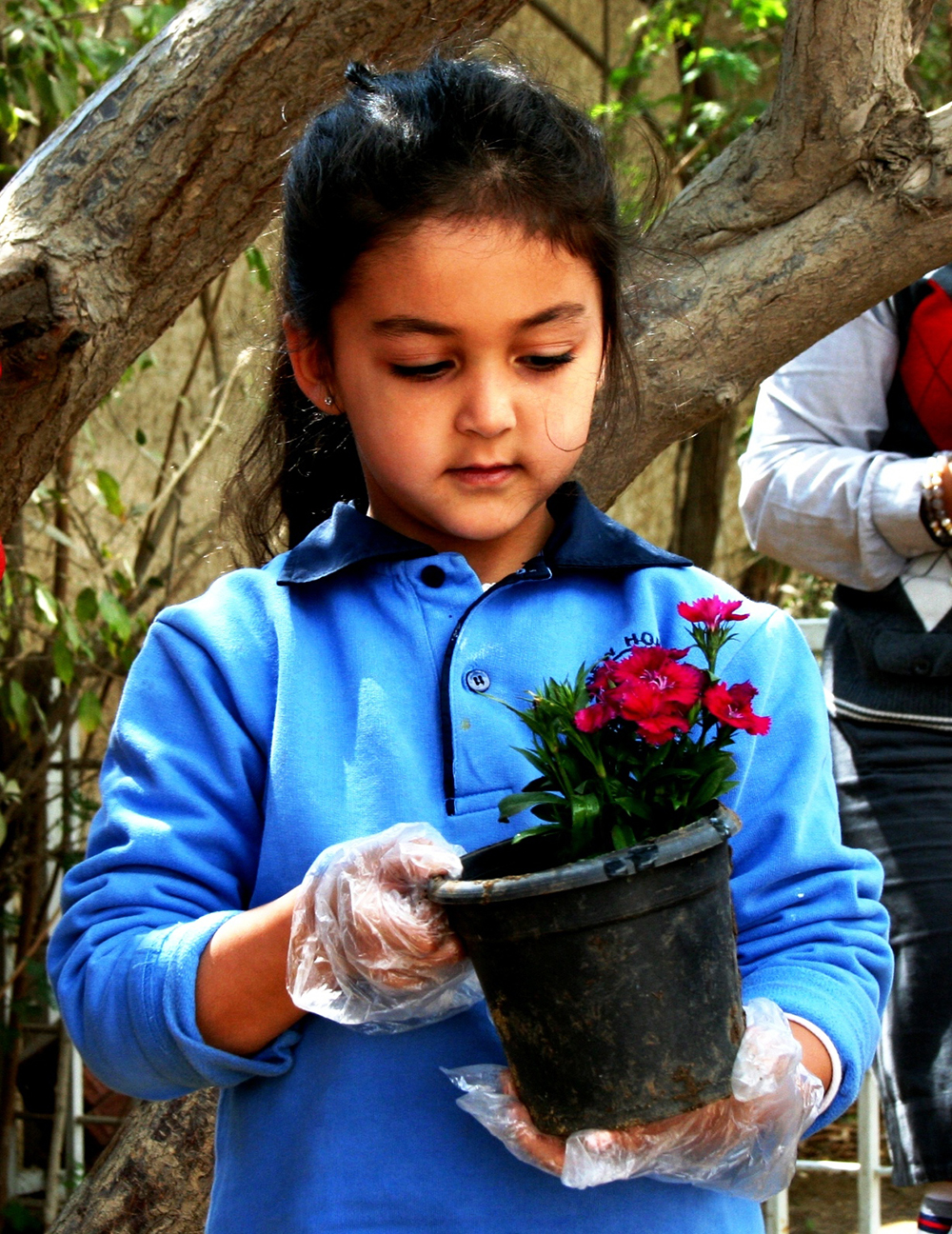 Planting Foundation March 18, 2013 032.JPG