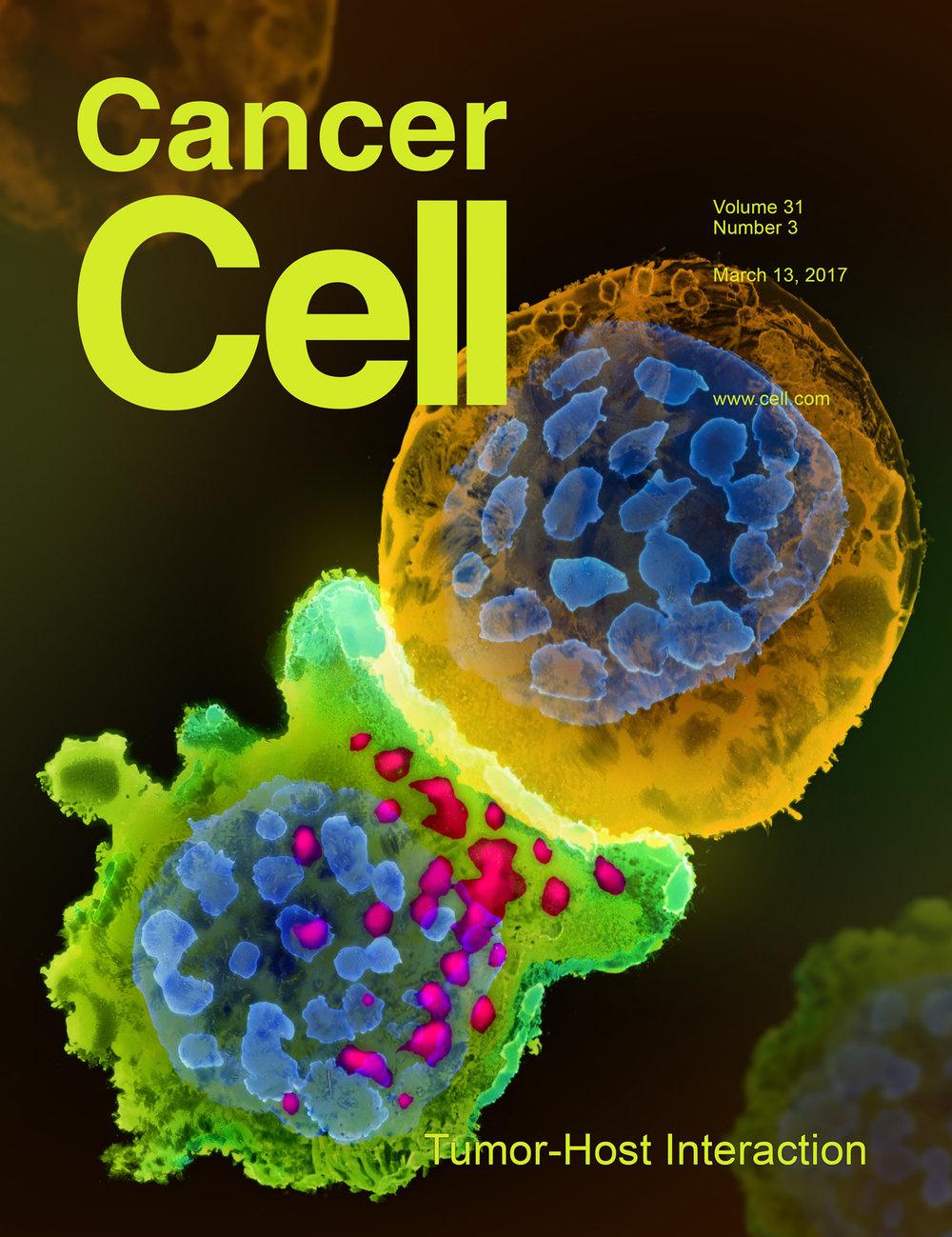 Li et al., Cancer Cell ,v31 n3