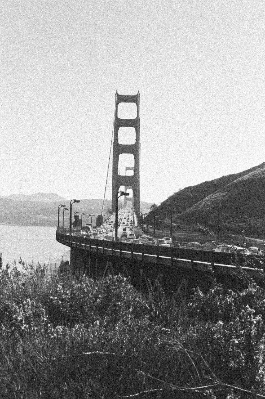 Alicia-Sturdy-Golden-Gate-Bridge-Biz_besties-2.jpg