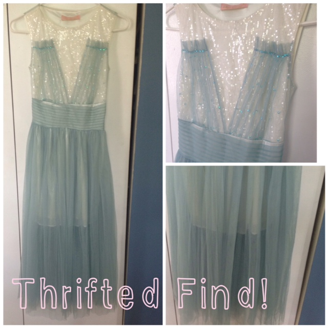 Thrifted Tulle Dress