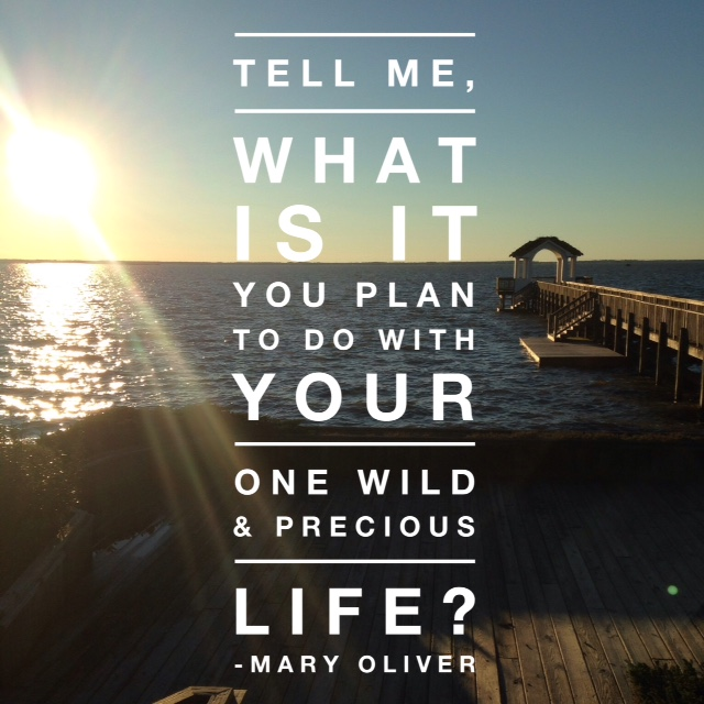 Wild and Precious Life Quote