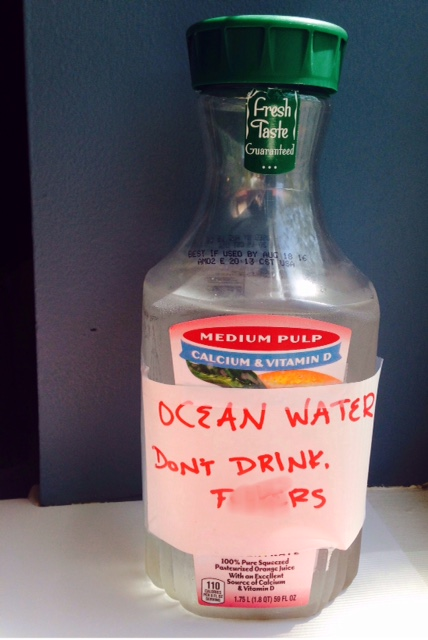 Ocean Water - Don't Drink