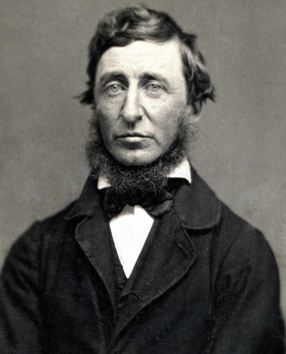 Daguerreotype of Thoreau by Benjamin D. Maxham. Public domain from Wikimedia Commons.