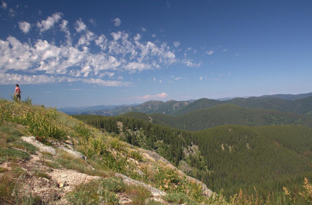 Bitterroot Mountains.jpg