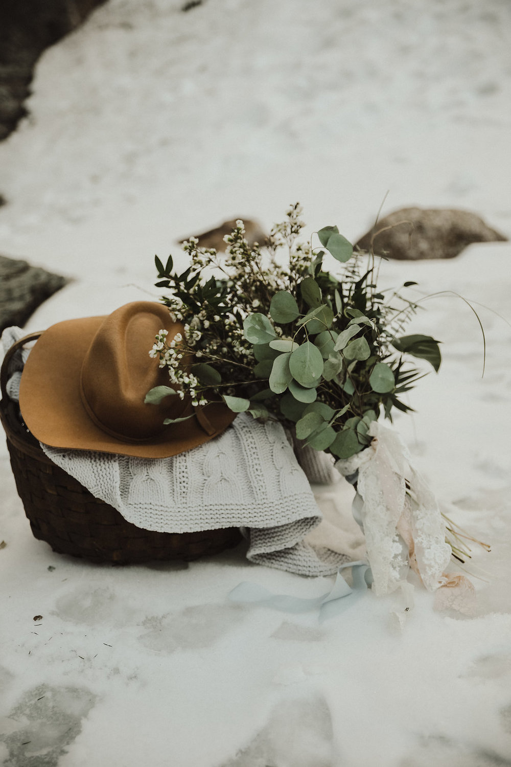 winter picnic elopement