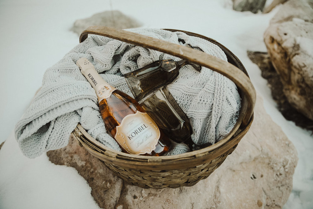 winter elopement picnic