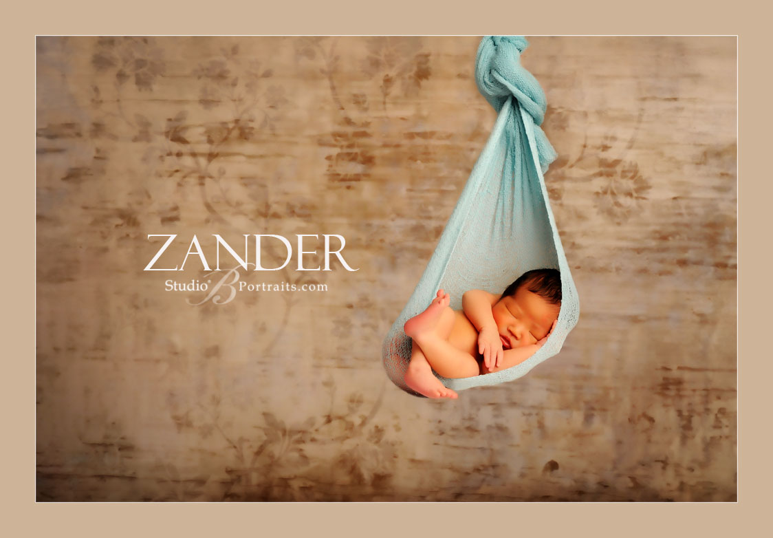Newborn-baby-boy-hanging-in-a-hammock-sling-at-Studio-B-Portraits-by-Brooke-Clark