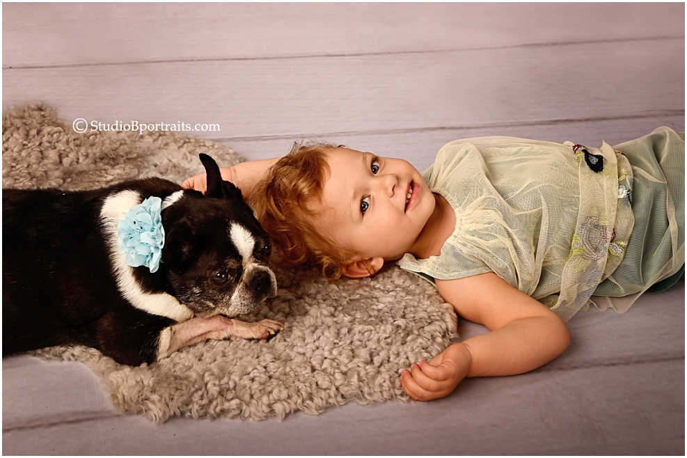 Boston terrier dog wearing blue flower bow around neck and laying with toddler girl