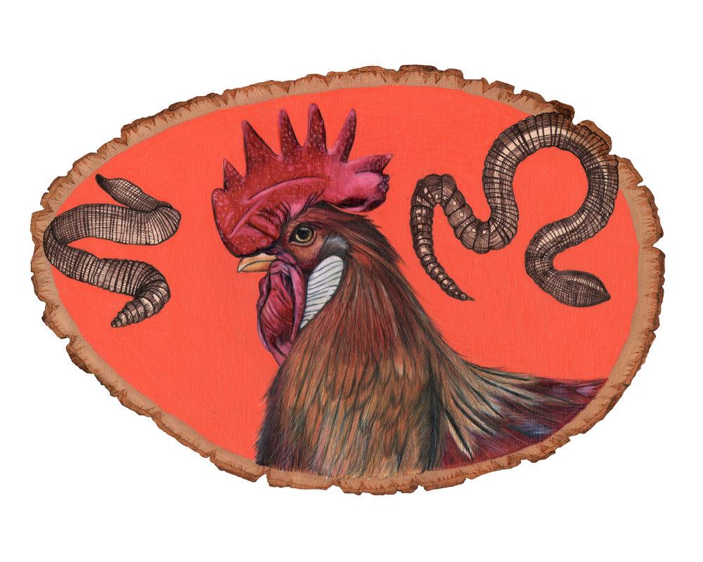 chicken8x10.jpg