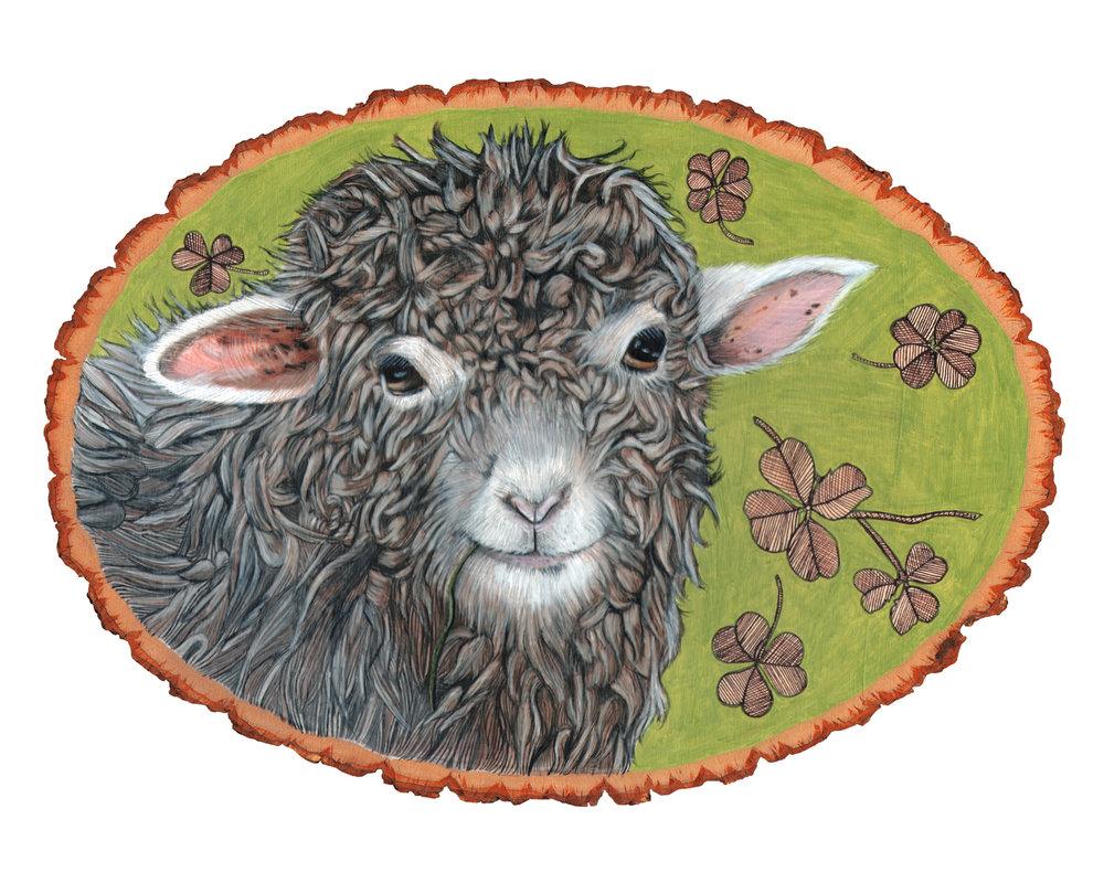 sheep8x10.jpg