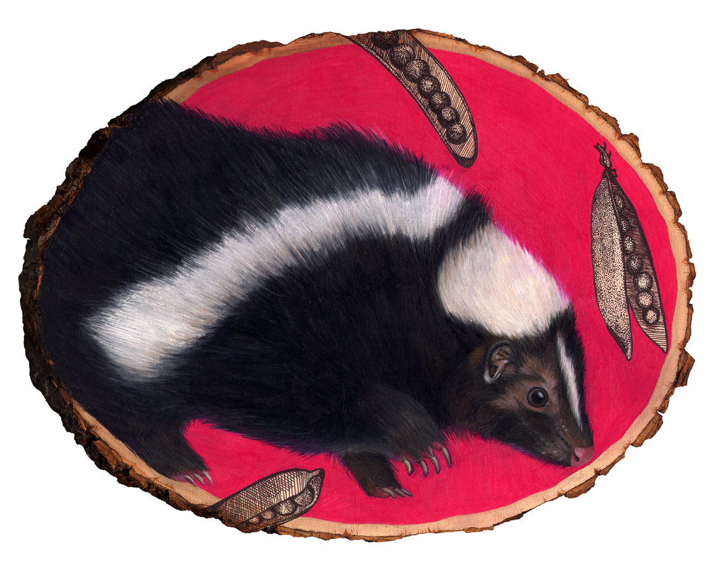 skunk 8x10.jpg