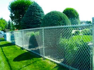 chainlink-fence.jpg