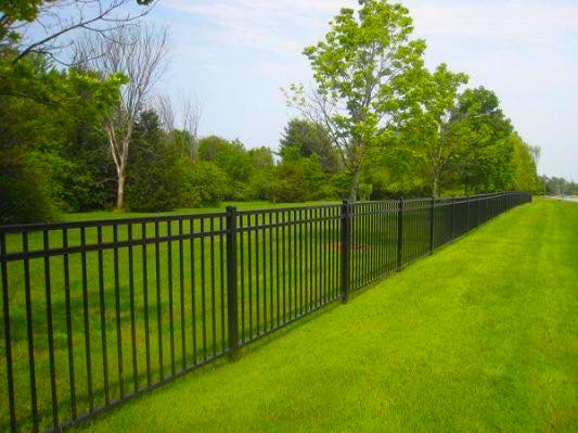 iron-fence.jpg