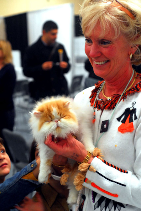 Cat Show at Madison Square Garden