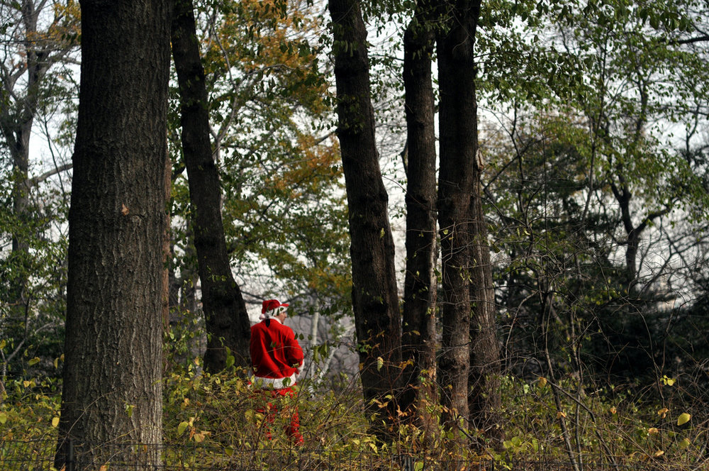 A  Santacon  participant stands in Central Park among trees on Saturday, December 11, 2010.