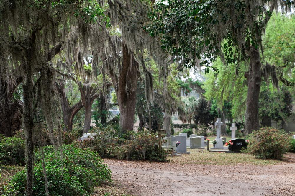 Exploring Bonaventure Cemetery