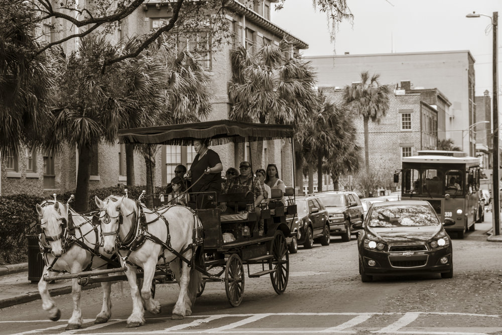 Horse and buggy tours in Savannah's Historic District