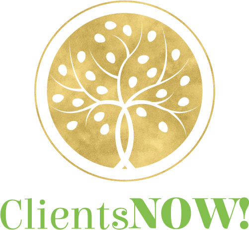 LSR - Clients NOW!_Logo COLOR.png