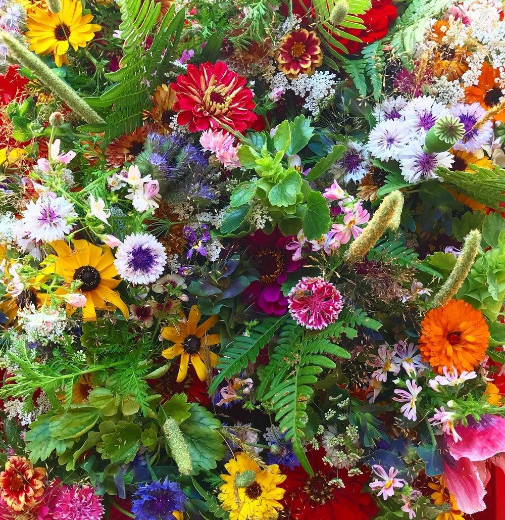 Last week's flower pallet