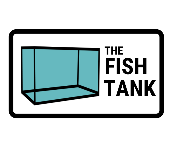 Digital Marketing Strategy | Fish Tank