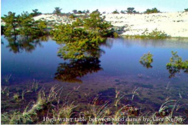 aaaaagwater-image1-e1286151641657.jpg