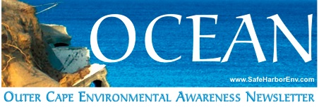 OCEAN 36 shares an intriguing collection of environmental topics: A nation's changeover to longer lasting currency hits a speed bump when bills are rejected by a Vegetarian cafe; A good idea for recycling used water from oil companies to farmers has unintended results; We finally have edible bags and in the UK, which we consider the Canary in the Climate Change coal mine, they once again experience flooding of historic proportions. The success of this e newsletter would not be possible without our readers, who share it with their friends. Thank you, Gordon Peabody, Editor