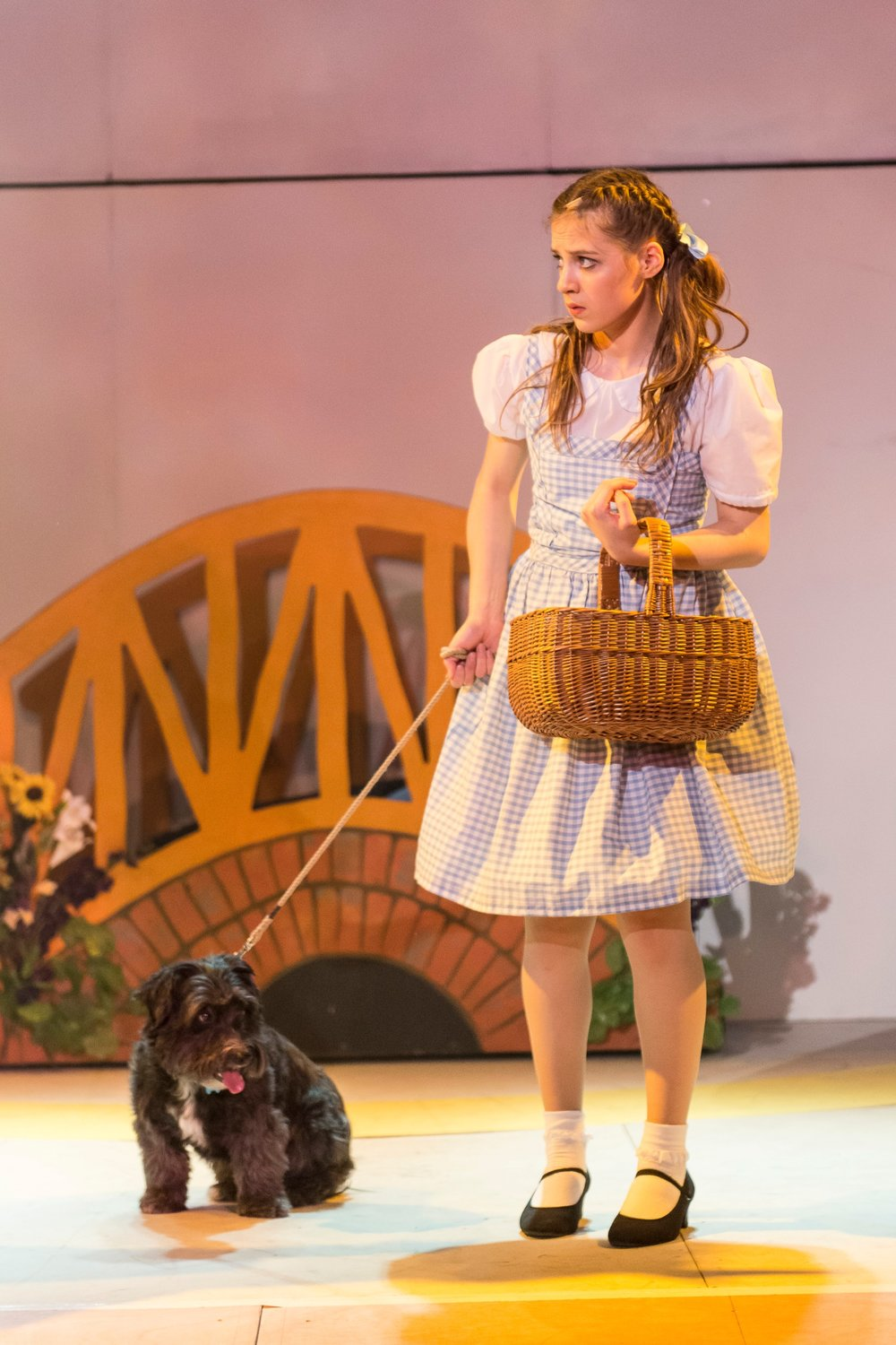 BATS - Wizard of Oz Nov 2014_9.jpg
