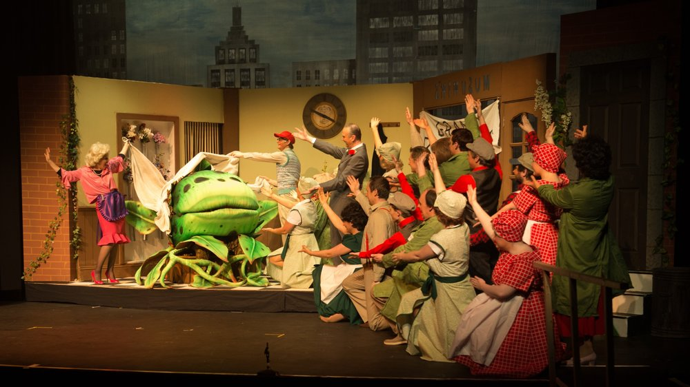 BATS - Little Shop of Horrors May 2013_9.jpg