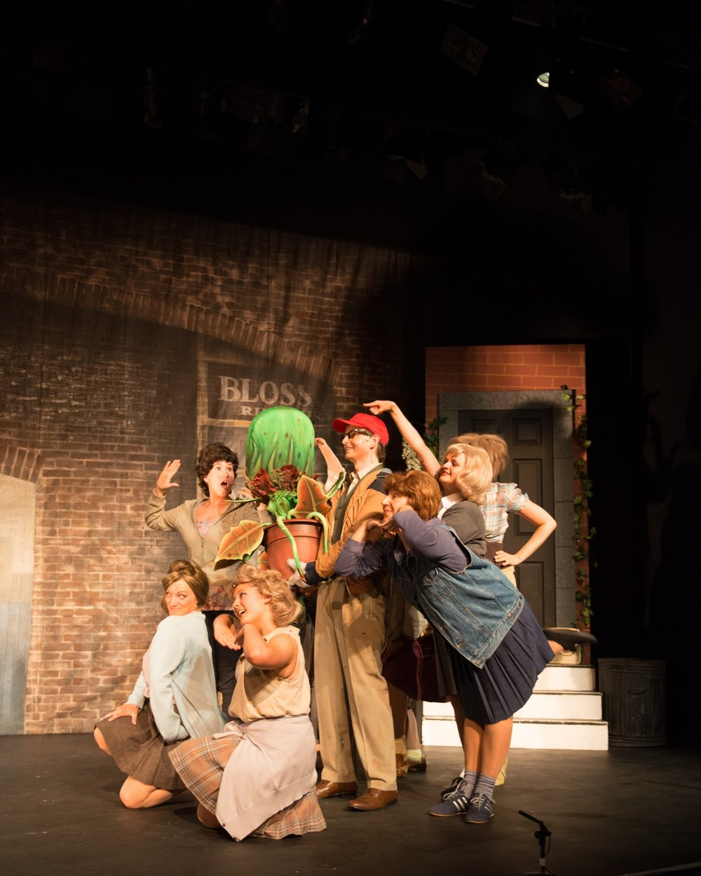 BATS - Little Shop of Horrors May 2013_6.jpg