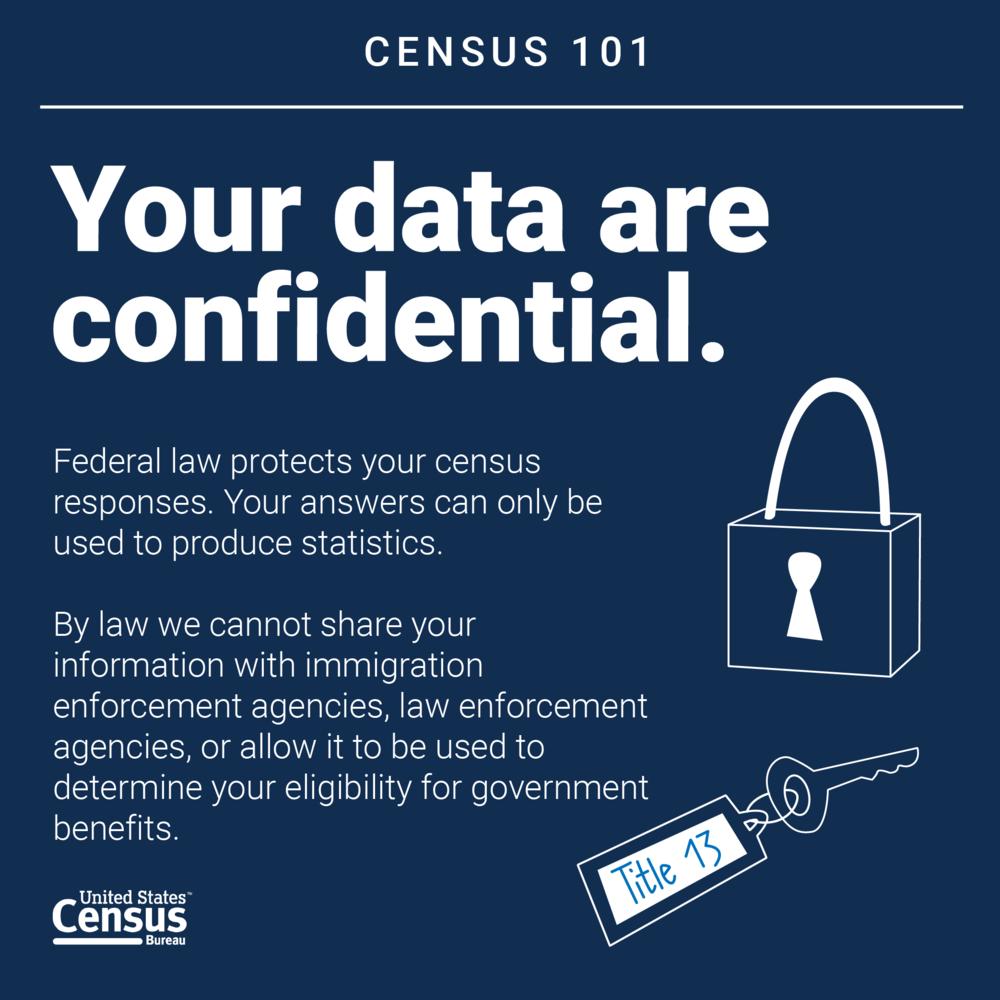 Census101_DataConfidential.png