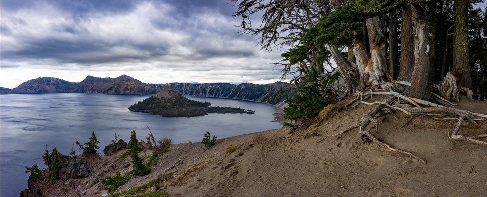 Crater lake Old Tree Pano.jpg