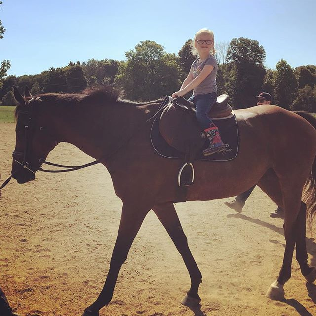 I remember when it was hot outside and not -12* and riding was fun and my niece actually wanted to come to the barn. Those were the days. 🥰 . . . 🐴 #equestrian #equestrianlife #equine #equestrianblogger #barnlife #horsesofinstagram #hunterjumper #ottb #bringbacksummer #summerhorseshows