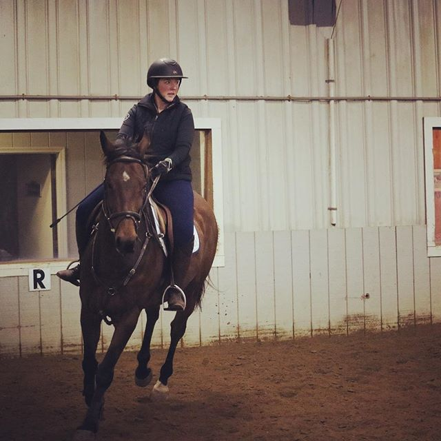 So we missed the February winter show thanks to the polar vortex and I'm kinda missing something to focus on! Good thing we leave for Aiken in 5 weeks! We'll be revving up for that real soon! 🐎🙌🏼 (photo cred: 📸 @chasing_the_dream2016) . . . 🐴 #equestrian #equestrianlife #equine #equestrianblogger #barnlife #horsesofinstagram #hunterjumper #ottb #eventersofinstagram #aiken #springtraining