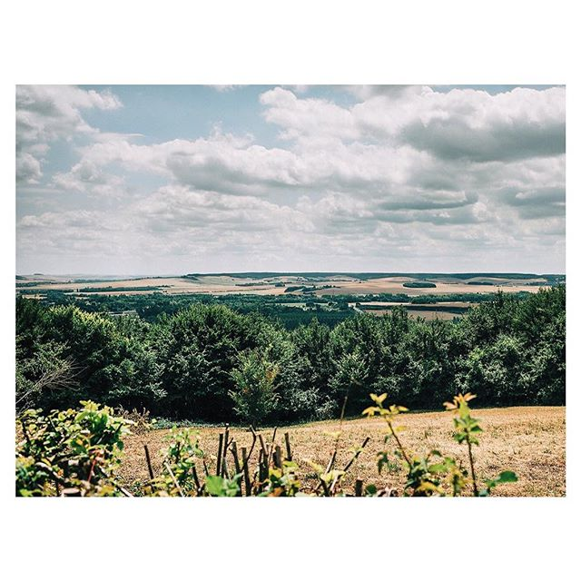 View from the chateau @jennyfustudio #chateaudufey
