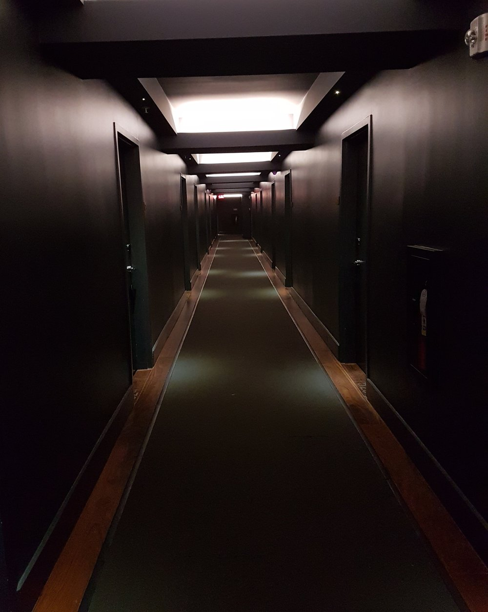 I think my only negative comment would be the hallways. They are painted charcoal. It really makes the hotel feel dark and gloomy.