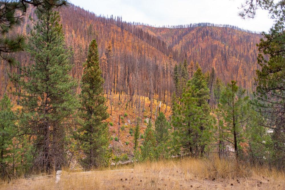 pine_flat_hot_springs_0082.jpg