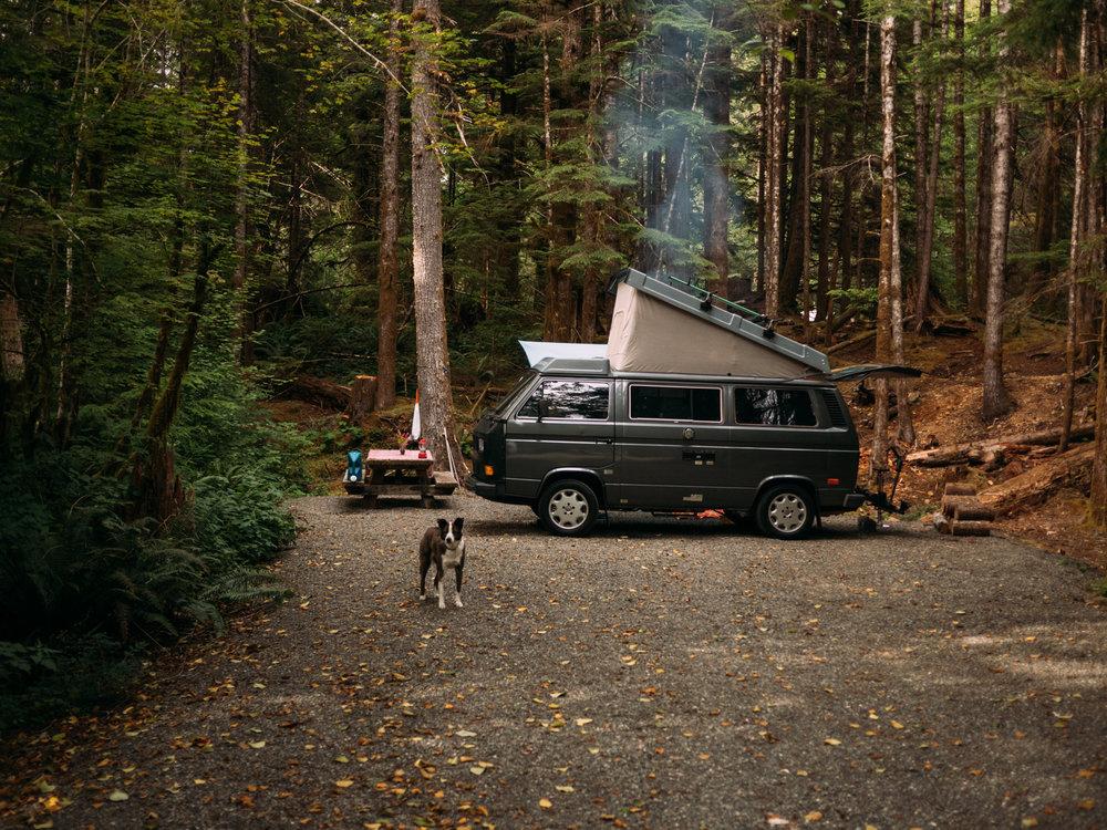 rent a vanagon camper van westfalia #vanlife.jpg