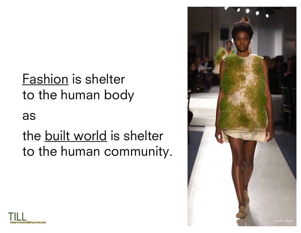 Runway_Earth_Introduction_20171027.final (1)-page-006.jpg