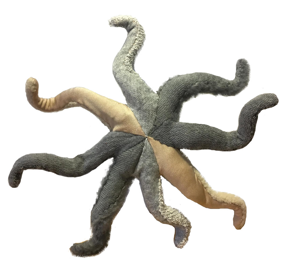octopus_after_underbelly.jpg