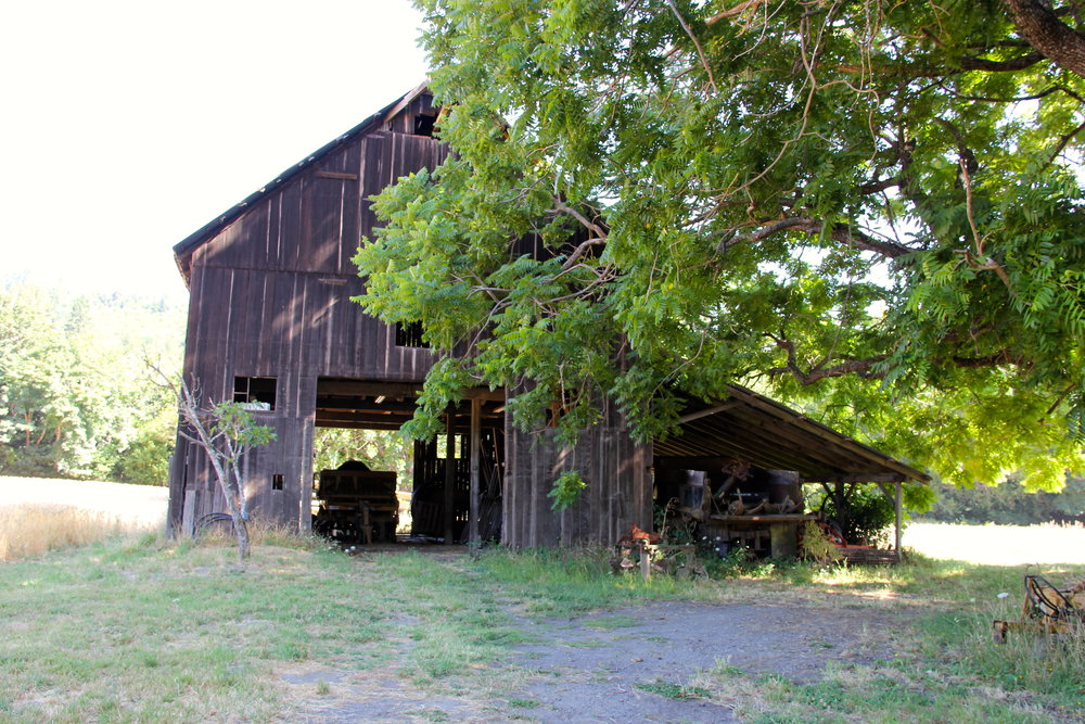 old barn IMG_4598.jpg