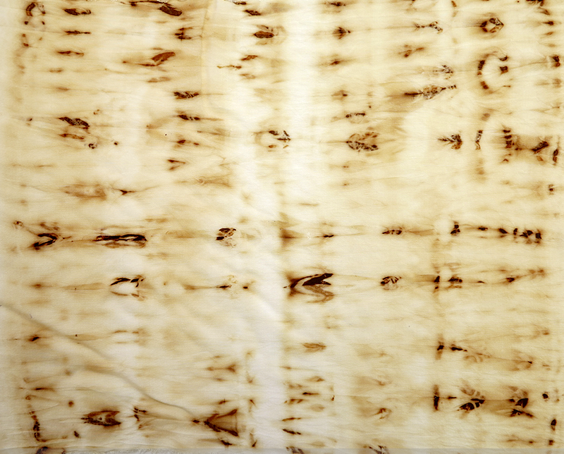 rust dye on 100% cotton