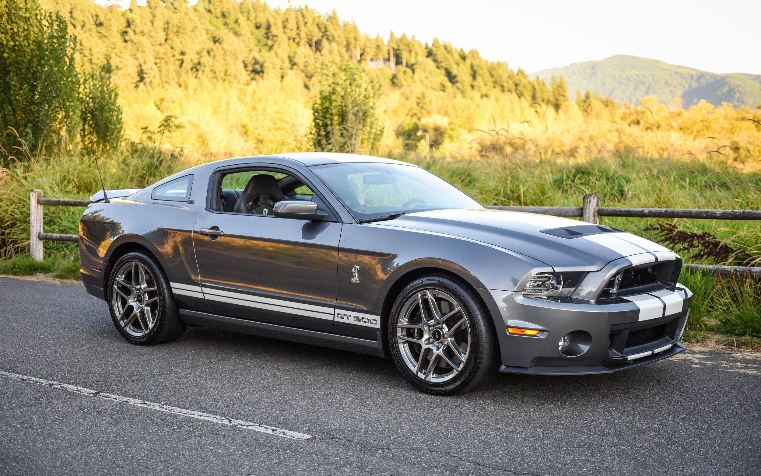 2013 Ford Shelby Gt500 Coupe Northwest European Gt 500