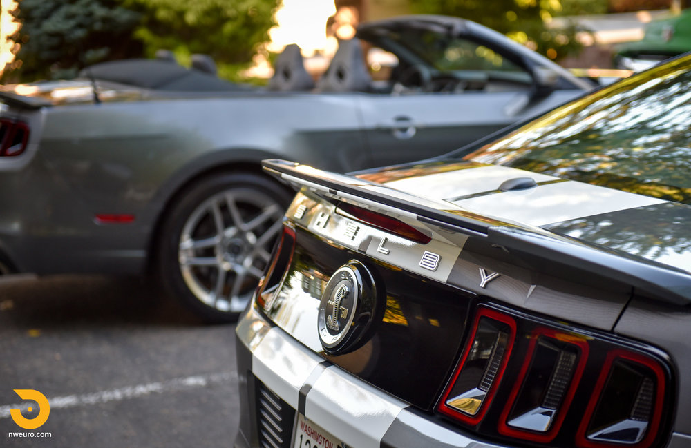 Ford Shelby GT500 Pair-5.jpg