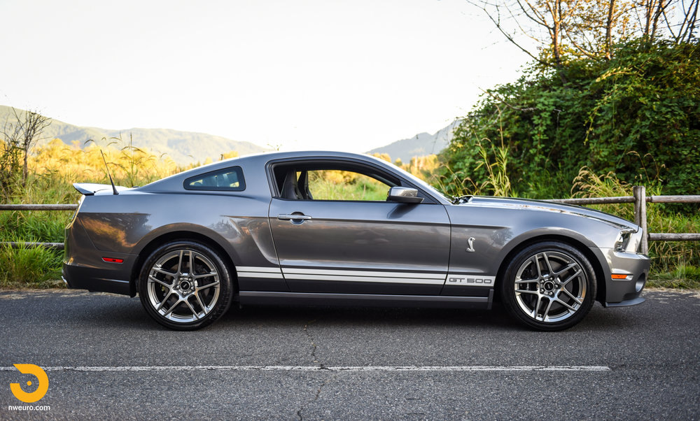 2013 Ford Shelby GT500-1.jpg